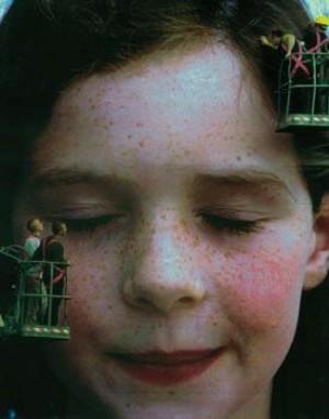 Installation at the Kilkenny Arts Festival 2001